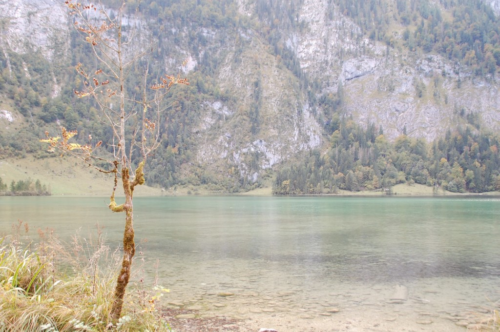 Königssee_Bayern_Natur_Kultur_Ausflug_Landschaft_Heimatliebe25