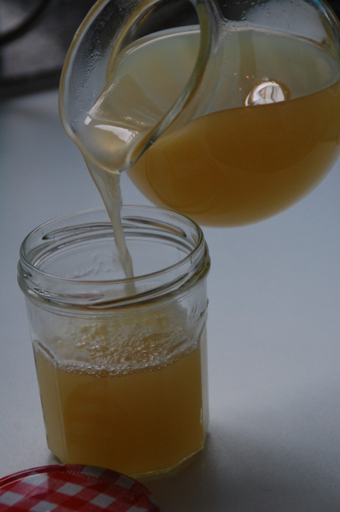 Ingwersirup_Sirup_DIY_Hausgemacht_Selbstgemacht_Kochen_Drink_Limonade_Tee8