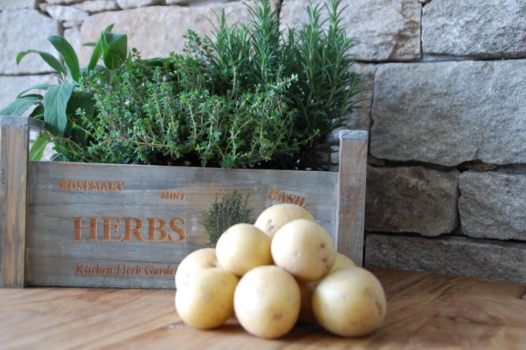 Kräuter_Kräutergarten_Herbs_Food_Kartoffeln_Rosmarinkartoffeln_Salbei_Thymian_Rosmarin9
