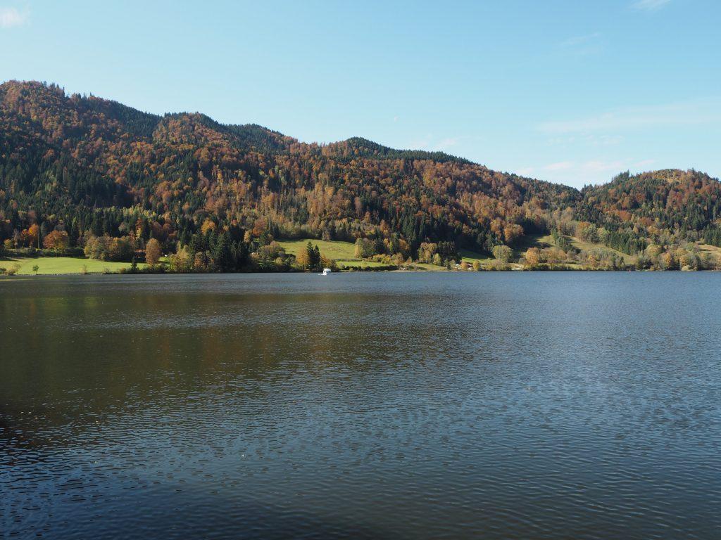 Schliersee_Schliersbergalm_Natur_Bayern_Heimat_Wandern_Ausflugsziel12.jpg
