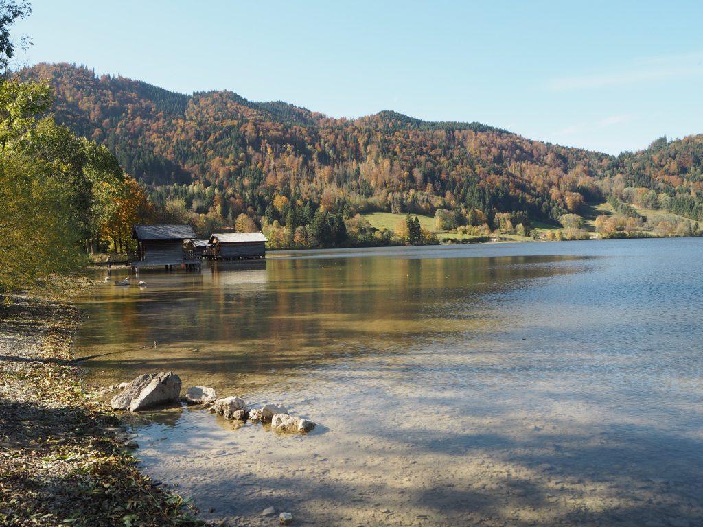 Schliersee_Schliersbergalm_Natur_Bayern_Heimat_Wandern_Ausflugsziel14.jpg