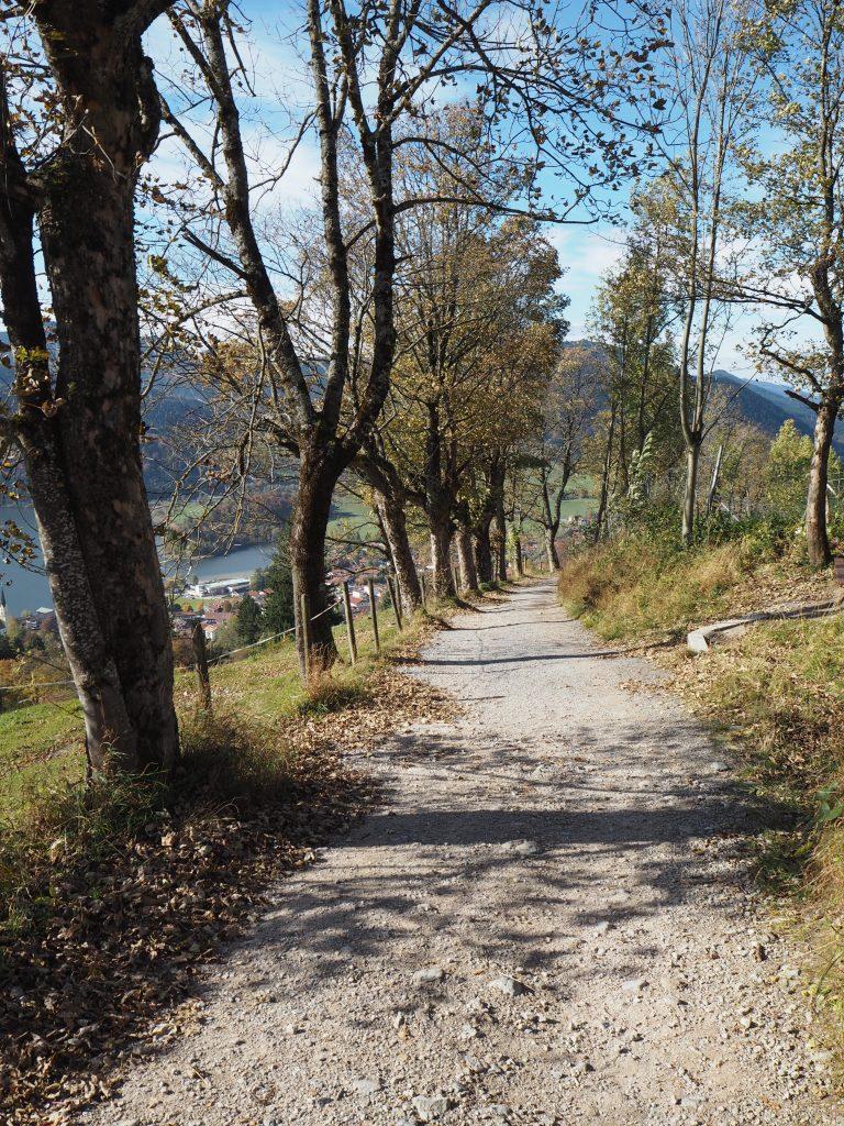 Wanderweg zur Schliersbergalm